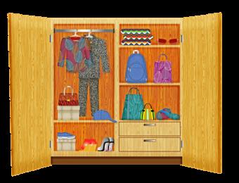 closet with organizer shelves